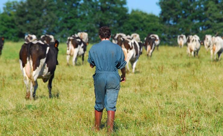 Une agriculture cologiquement responsable en ille et - Chambre agriculture ille et vilaine ...