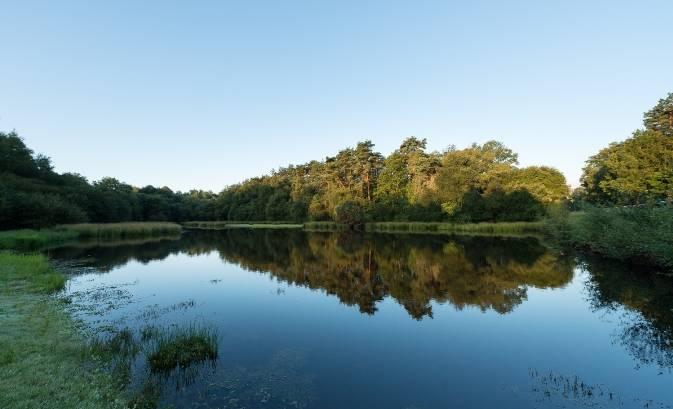 étang de l'abbaye de Paimpont : un espace naturel du Département d'Ille-et-Vilaine © Emmanuel Berthier