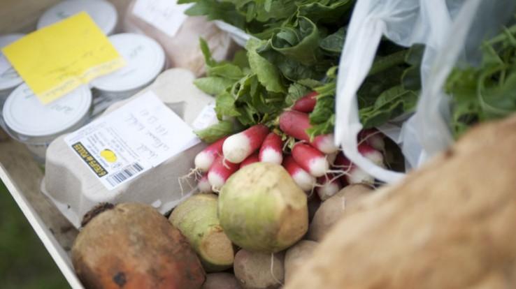 Légumes sur un étal