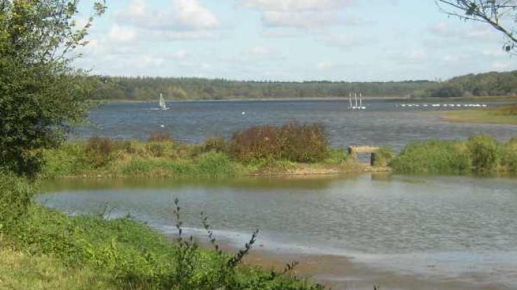 L'étang de Boulet à Feins : un espace naturel du Département d'Ille-et-Vilaine