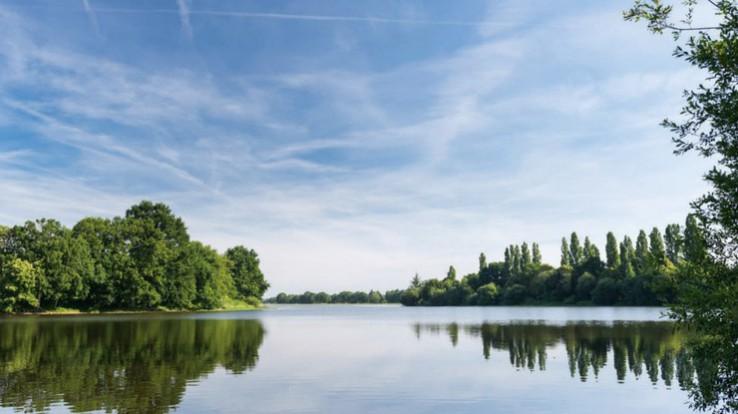 étang de Châtillon-en-Vendelais