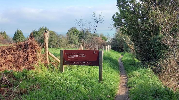 Image : Cuisin'Algues