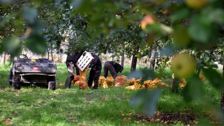 Image : Repair Café