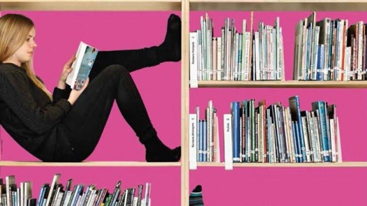 Image : polders à vélo