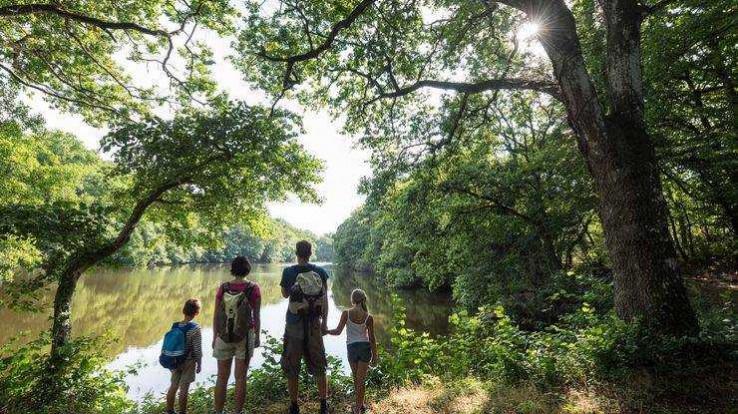 foto de Le parc de la Higourdais, des étangs en cascade   Département Ille ...