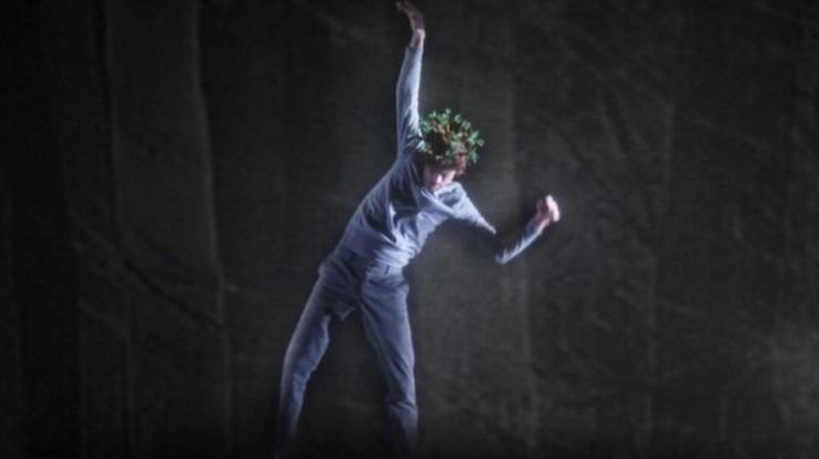 La forêt ébouriffée, spectacle de dansedes frères Ben Aïm