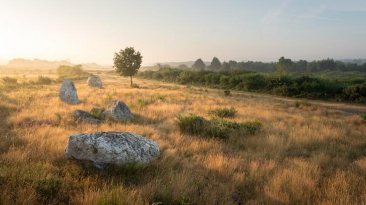 Les landes de Cojoux © Emmanuel Berthier