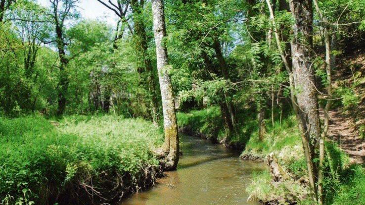 La vallée du Canut, Lassy