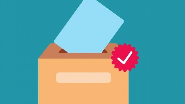 urne vote elections départementales
