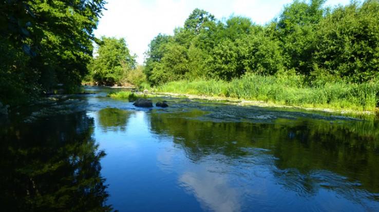 Rivière en campagne
