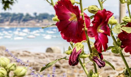 De nouveaux panneaux fleurissent sur la route des vacances