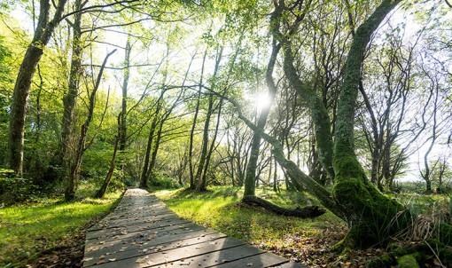 4 sites remarquables à découvrir en Ille-et-Vilaine