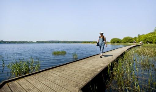 L'Ille-et-Vilaine hors des sentiers battus : 7 idées pour l'été
