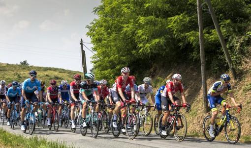 Le Département d'Ille-et-Vilaine accueillera le prochain Tour de France.