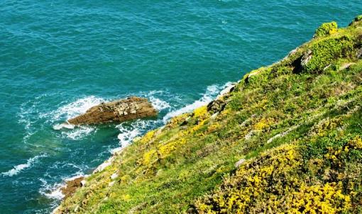 Pointe du Grouin Cancale