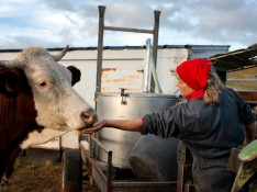 Image : Timothé Poissonnet