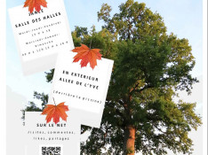 Image : Florent Pagny
