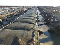 Image : Deux enfants volent dans le ciel dans une boîte en carton