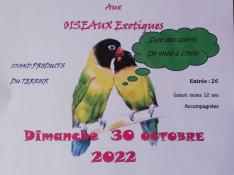 Image : Affiche semaine arts & nature