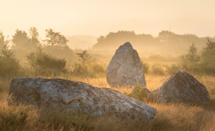 Les landes de Cojoux © Emmanuel Bertier