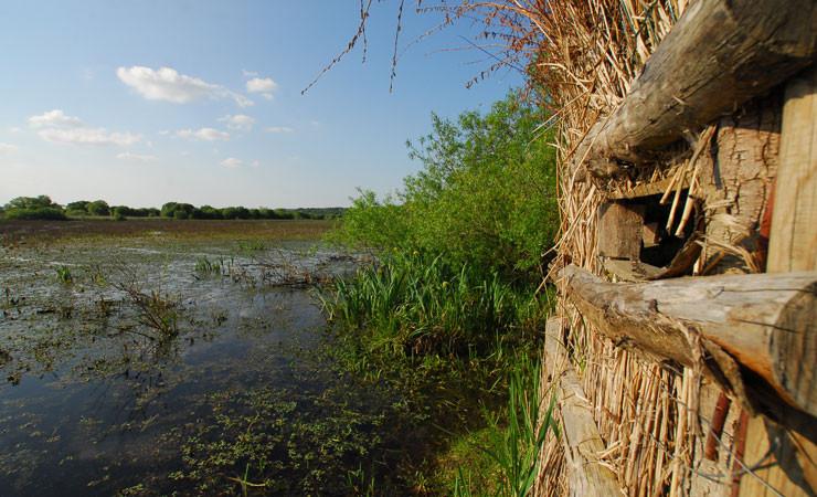 Les marais de Gannedel