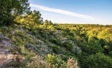 Espace naturel départemental de la Chambre au loup à Iffendic
