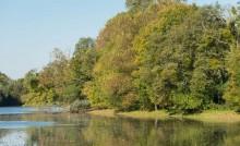 L'étang de la Forge à Martigné-Ferchaud et Eancé