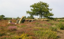 Mégalithes sur les landes de Cojoux